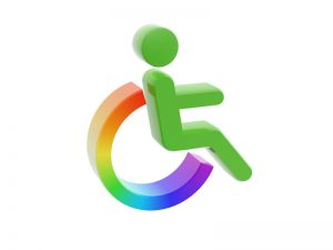 Read more about the article Including Persons with Disabilities