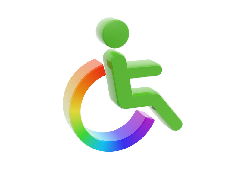 You are currently viewing Including Persons with Disabilities